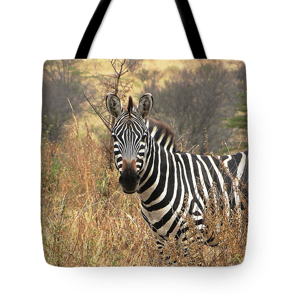 Serengeti Tote Bag featuring the photograph Zebra In Serengeti by Nature and Wildlife Photography