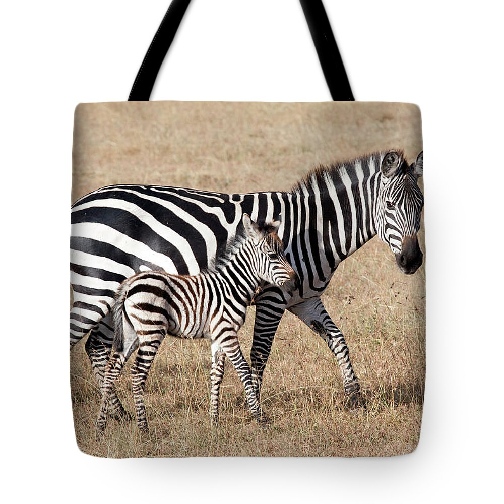Kenya Tote Bag featuring the photograph Zebra With Young Foal, Masai Mara by Angelika