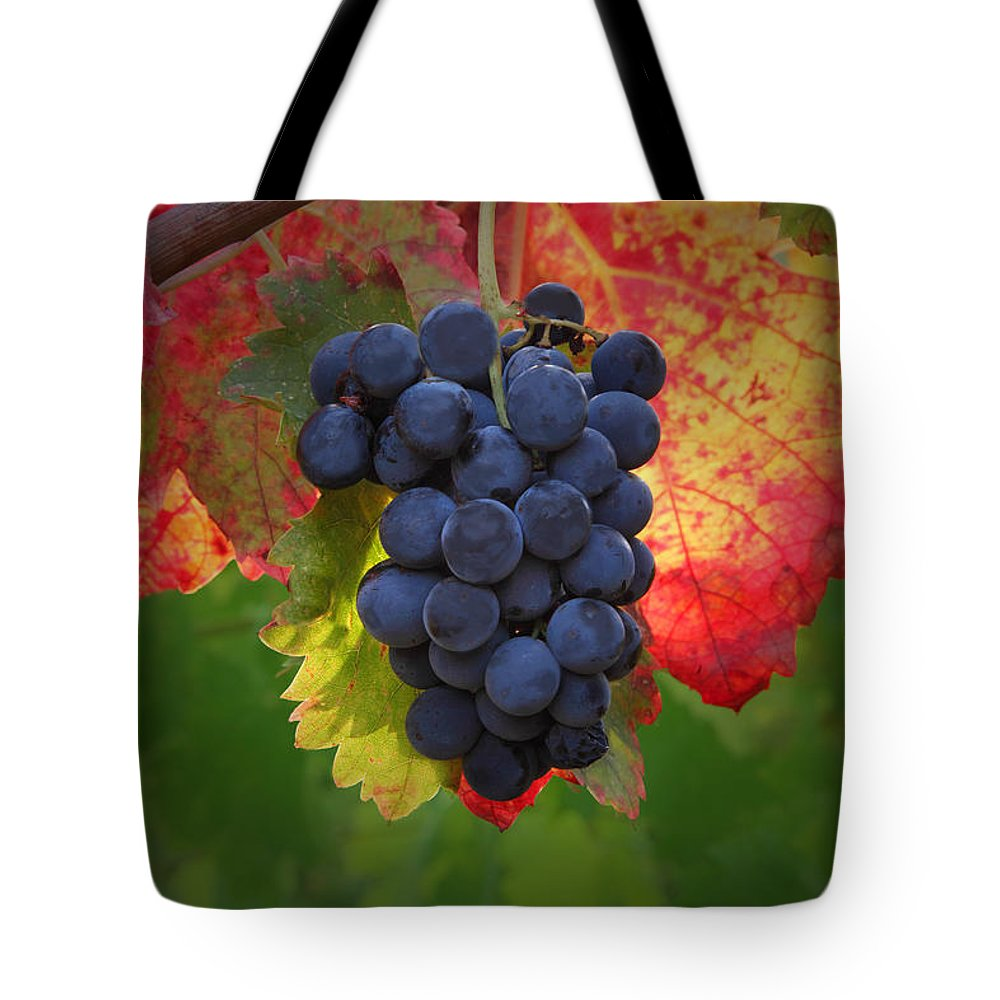 Wine Tote Bag featuring the photograph Zinfandel Grapes by Susan Rovira