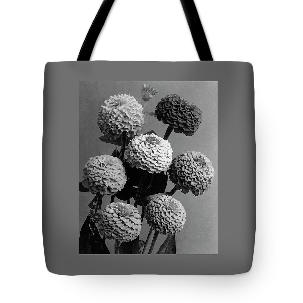 Flowers Tote Bag featuring the photograph Zinnia Lilliput Flowers by J. Horace McFarland
