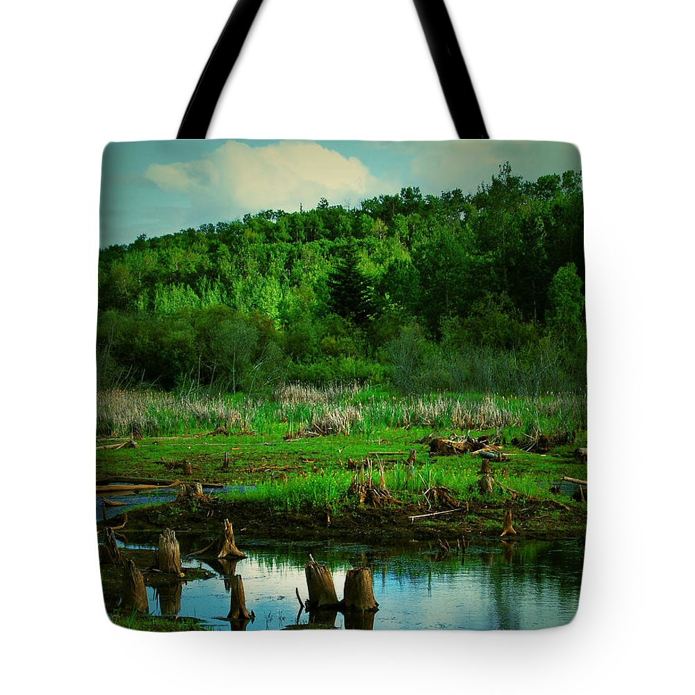 Art Photographs Photographs Framed Prints Photographs Tote Bag featuring the photograph St Anne by The Artist Project