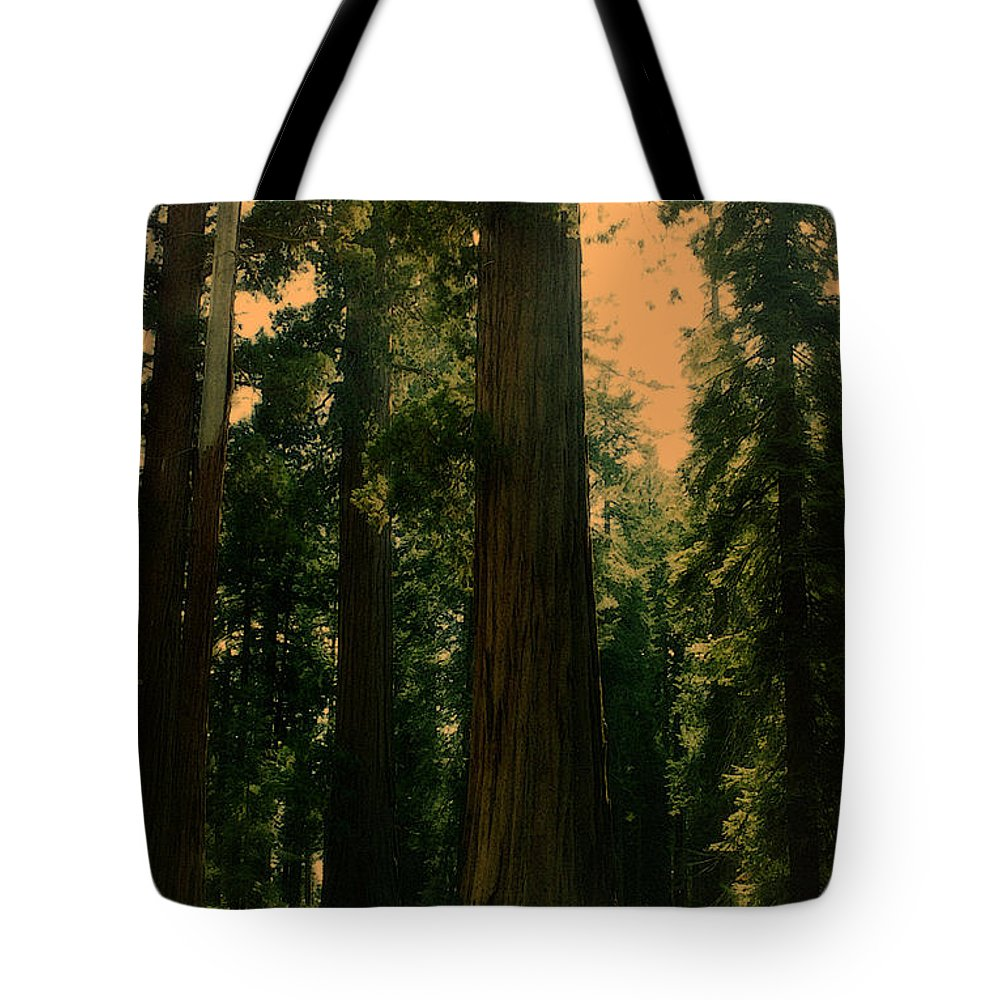 Large Trees Tote Bag featuring the photograph Yosemite Forest by Lydia Holly