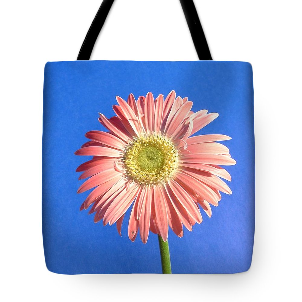 Gerbera Photographs Tote Bag featuring the photograph 0711c by Kimberlie Gerner