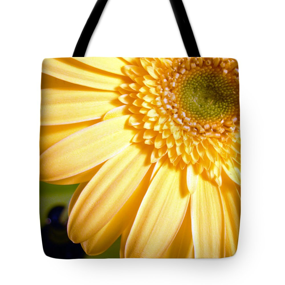 Gerbera Photographs Tote Bag featuring the photograph 0741.2 by Kimberlie Gerner