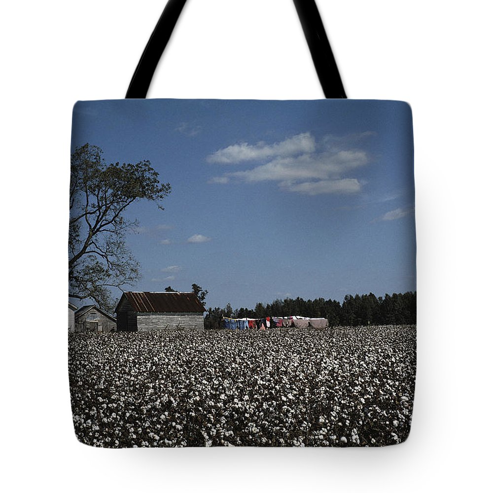 Farmers And Farming Tote Bag featuring the photograph A Cotton Field Surrounds A Small Farm by Medford Taylor
