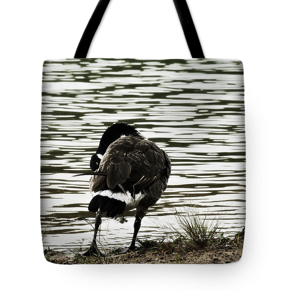 Canadian Goose Tote Bag featuring the photograph At The Waters Edge by Douglas Barnard
