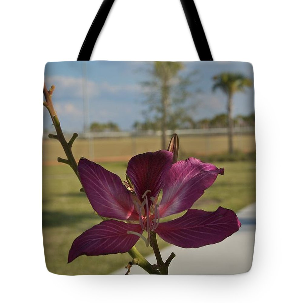 Ave Maria Tote Bag featuring the photograph Ave Maria by Joseph Yarbrough