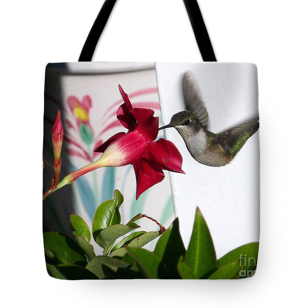 Color Photography Tote Bag featuring the photograph Beauty And Grace by Sue Stefanowicz