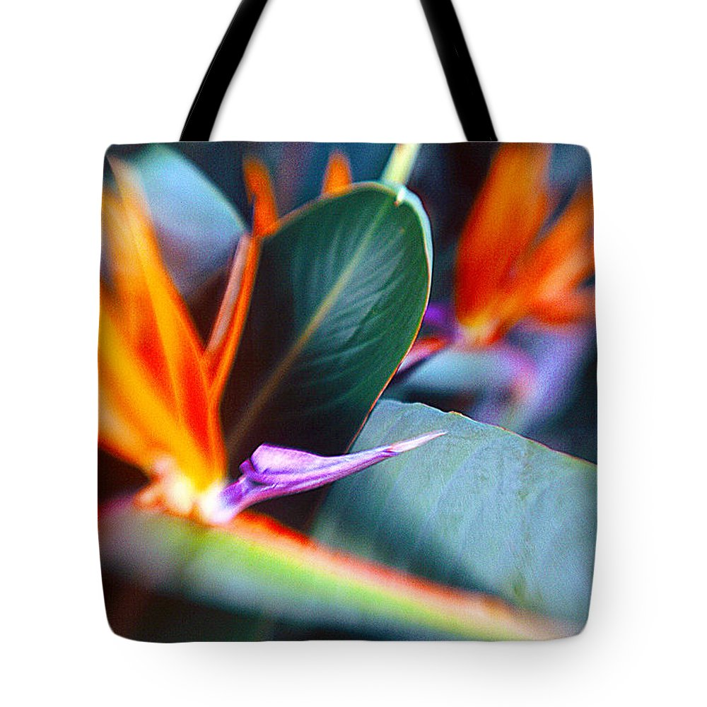 Flower Tote Bag featuring the photograph Bird Of Paradise by La Rae Roberts