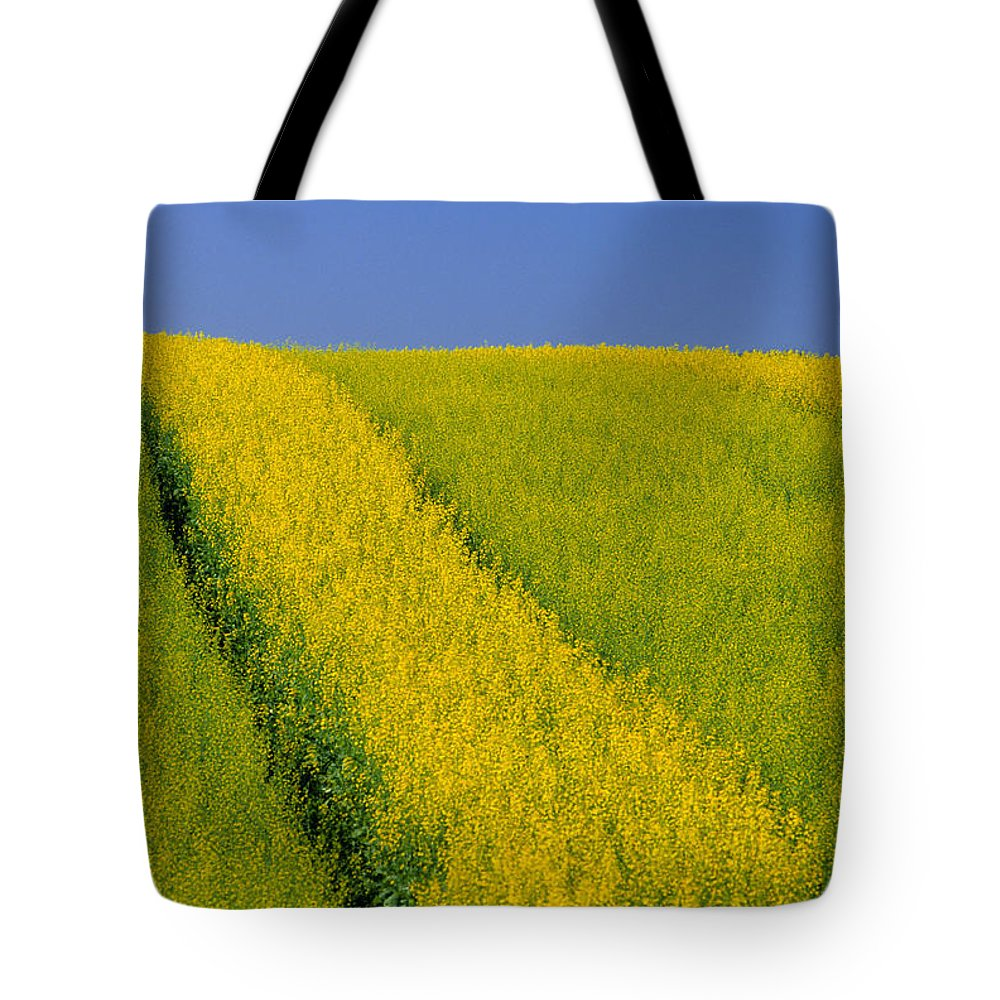 Canola Field Tote Bag featuring the photograph Canola Field, Darlington, Prince Edward by John Sylvester