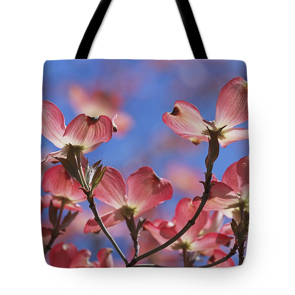 Plants Tote Bag featuring the photograph Close View Of Pink Dogwood Blossoms by Darlyne A. Murawski