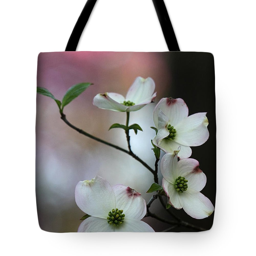 Cornus Florida Tote Bag featuring the photograph Dogwood by Daniel Reed
