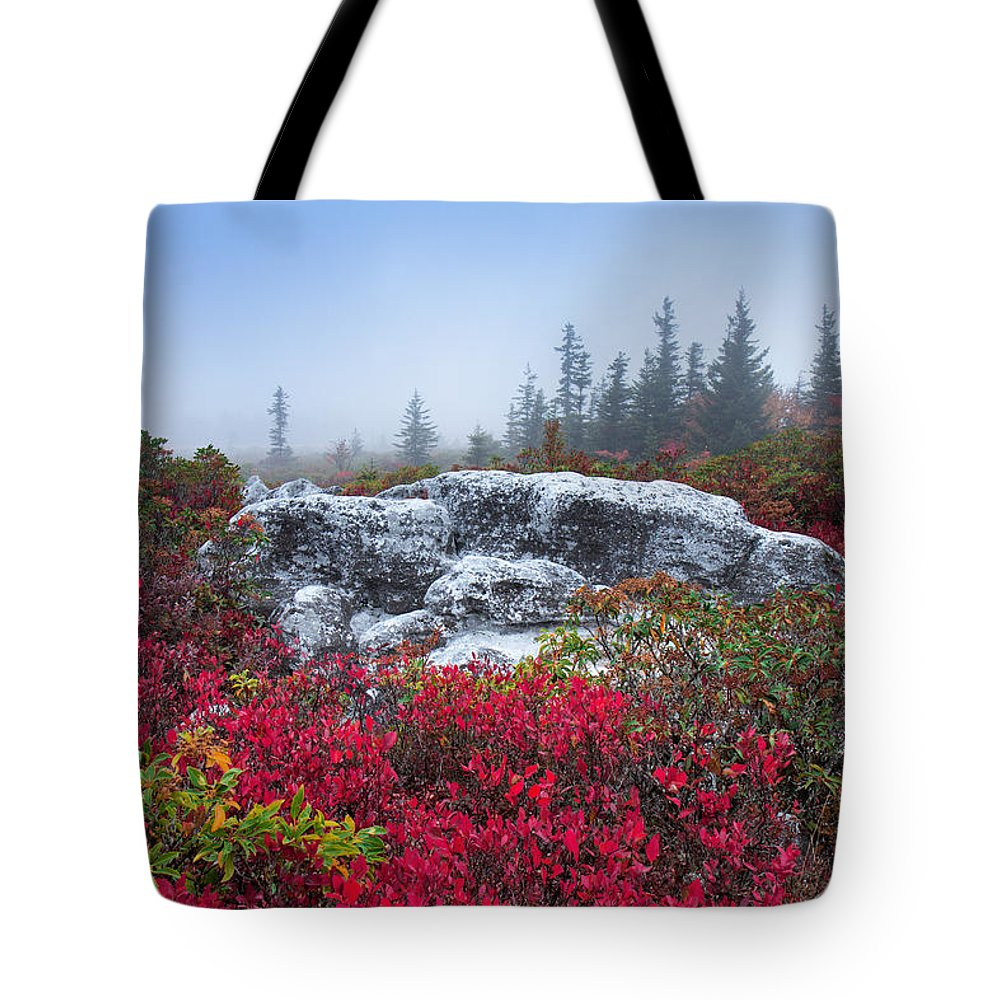 Early Morning Tote Bag featuring the photograph Dolly Sods Wilderness by Mary Almond