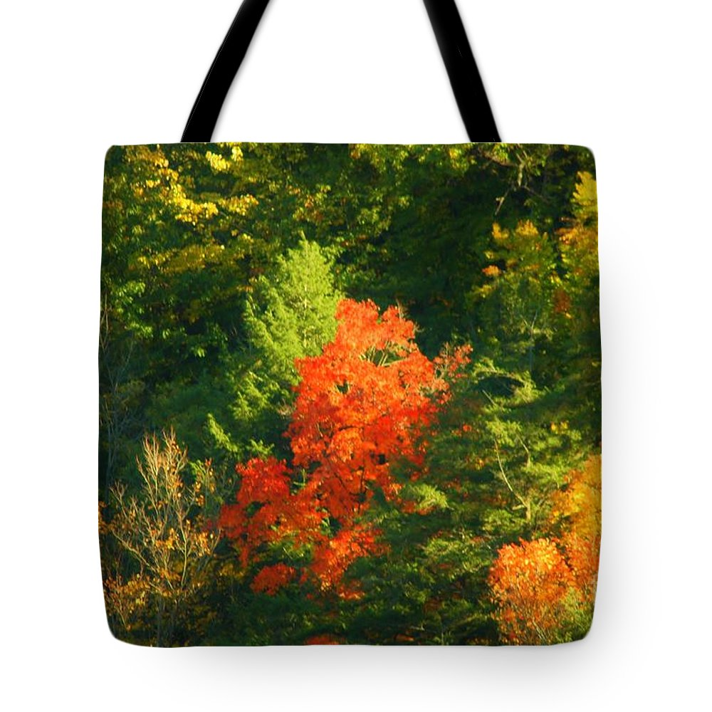 Fall Tote Bag featuring the photograph Fall Colors by Kathleen Struckle