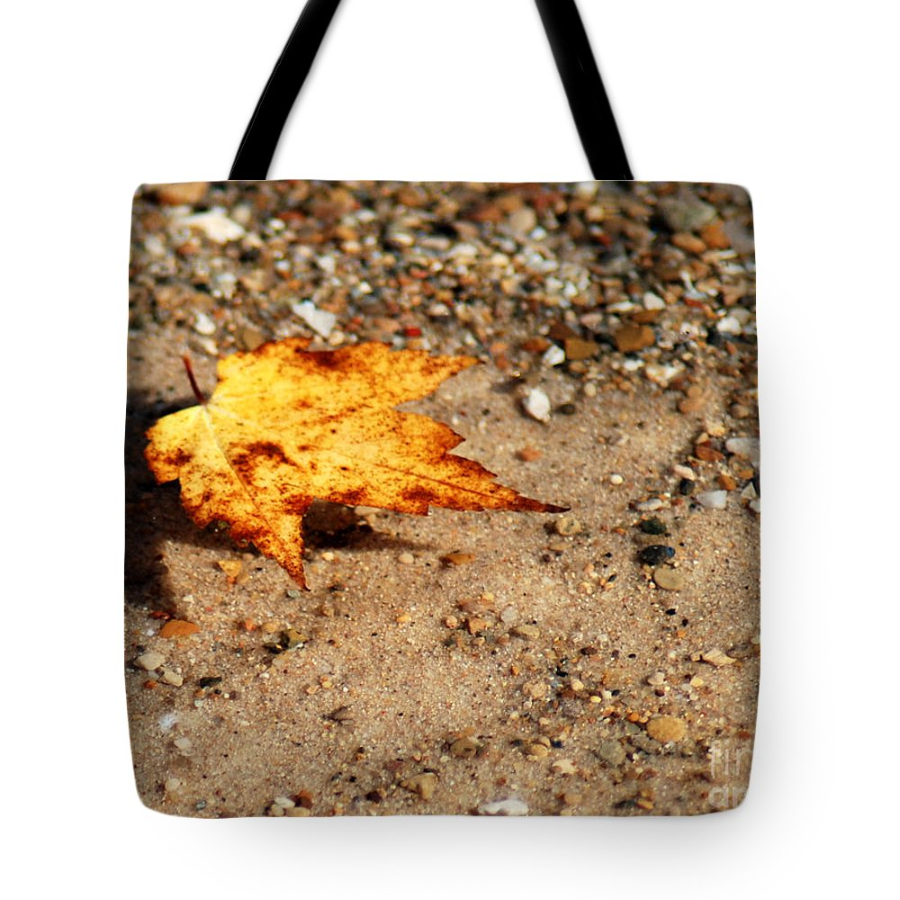 Fall Tote Bag featuring the photograph Floating Autumn Leaf by Optical Playground By MP Ray