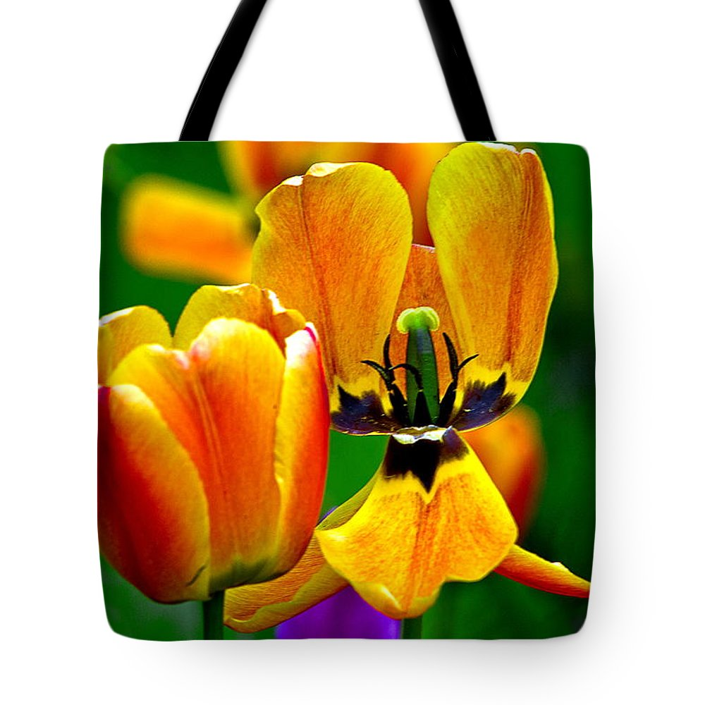 Tote Bag featuring the photograph Flower 3 by Burney Lieberman