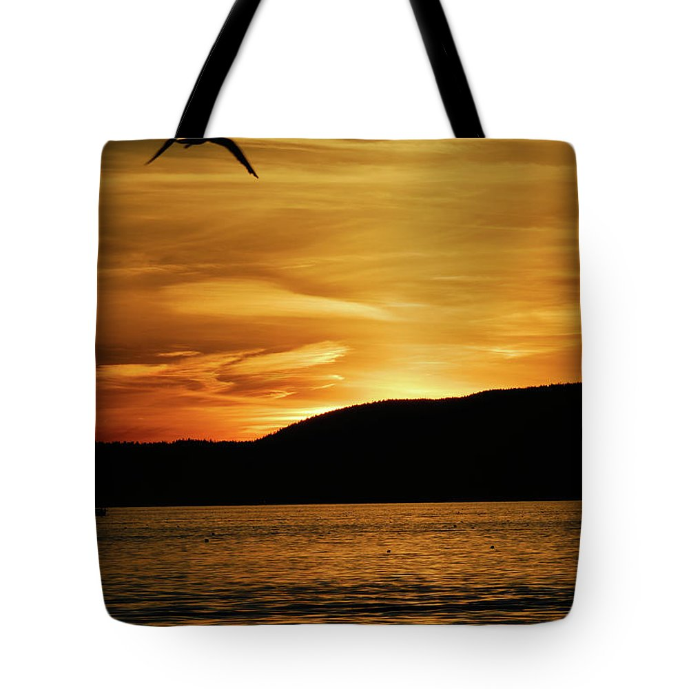 acadia National Park Tote Bag featuring the photograph Flying Home by Paul Mangold