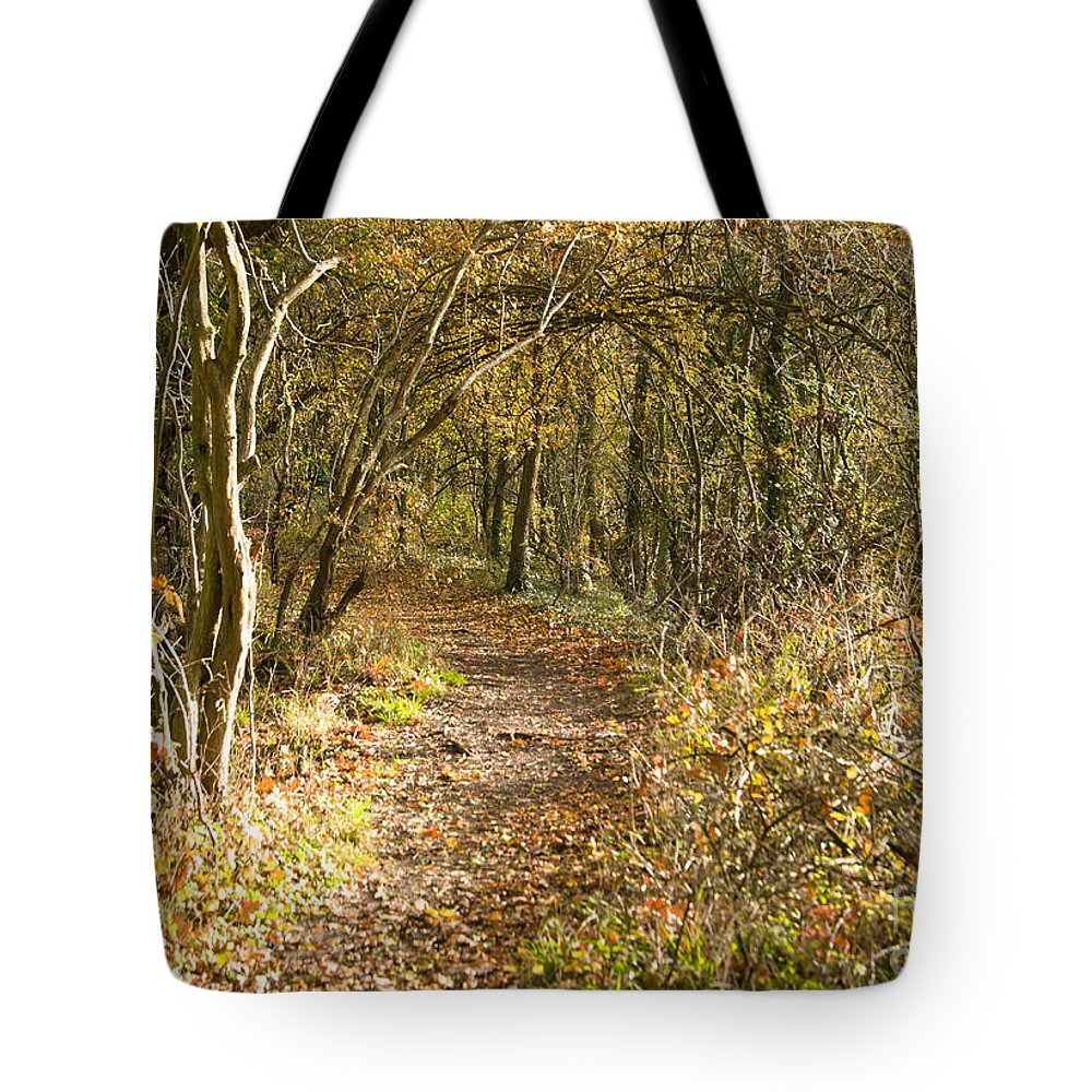 Britain Tote Bag featuring the photograph Forest Path by Andrew Michael