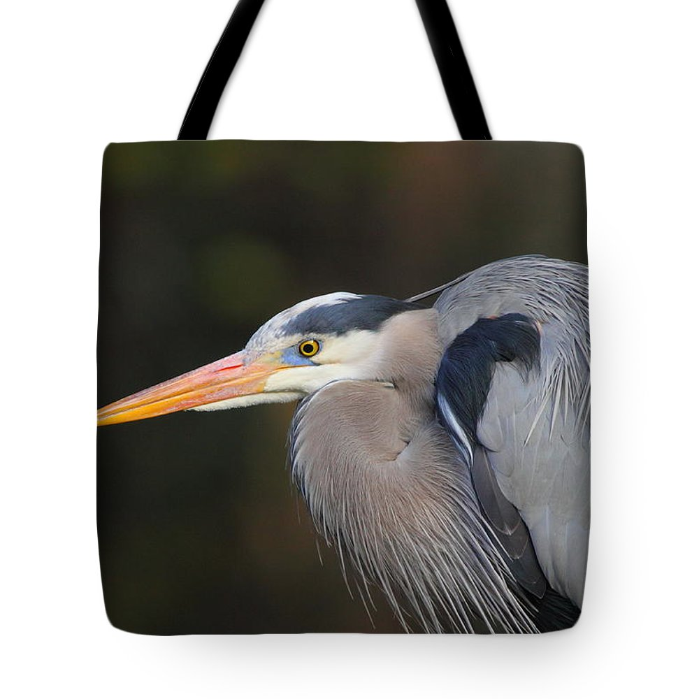 Birds Tote Bag featuring the photograph Great Blue Heron by Bruce J Robinson