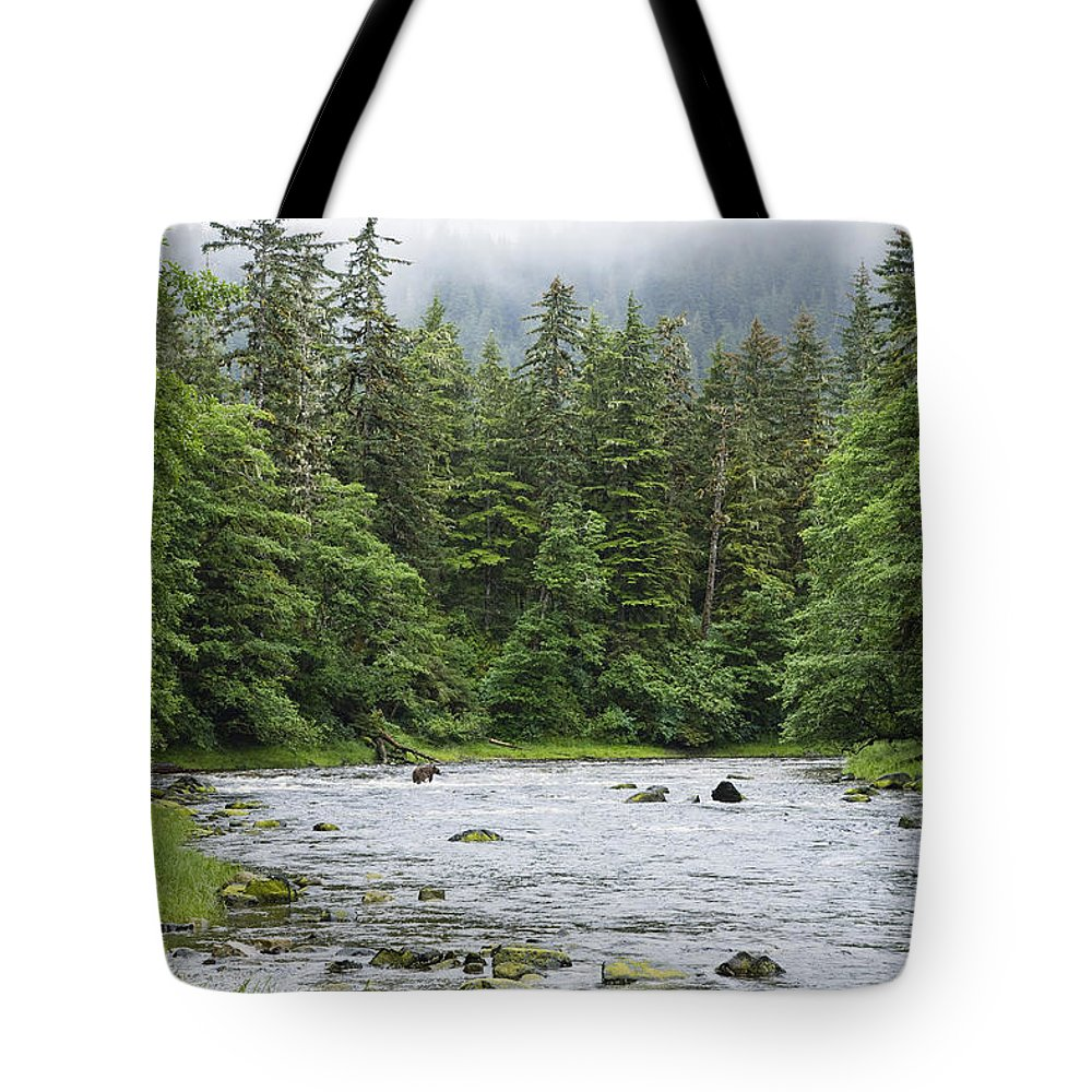 Mp Tote Bag featuring the photograph Grizzly Bear Ursus Arctos Horribilis by Konrad Wothe