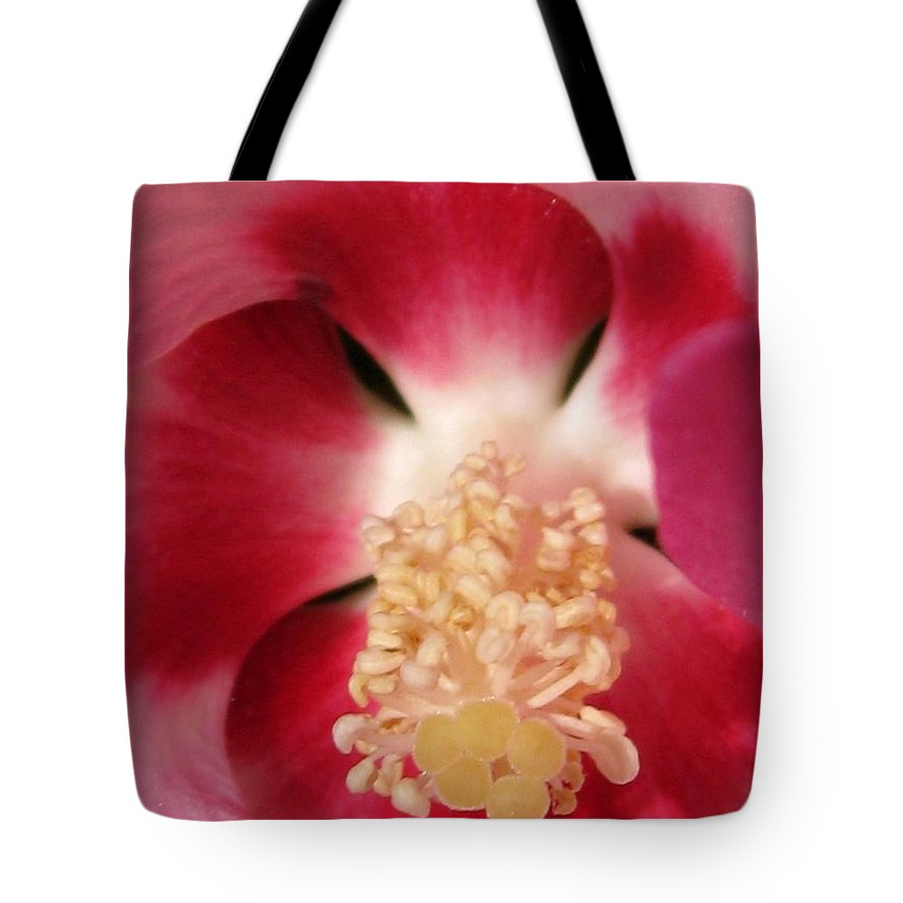 Hibiscus Moscheutos Tote Bag featuring the photograph Hibiscus Moscheutos Named Luna Pink Swirl by J McCombie