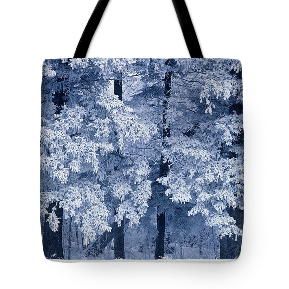 Birds Hill Provincial Park Tote Bag featuring the photograph Hoarfrost On Trees In Winter, Birds by Mike Grandmailson