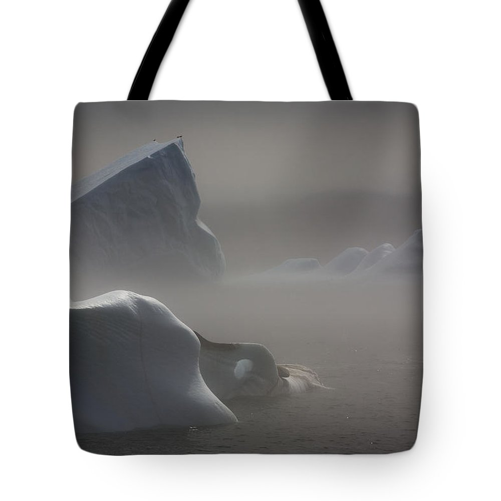 Color Images Tote Bag featuring the photograph Icebergs In Fog, Quirpon Island by John Sylvester