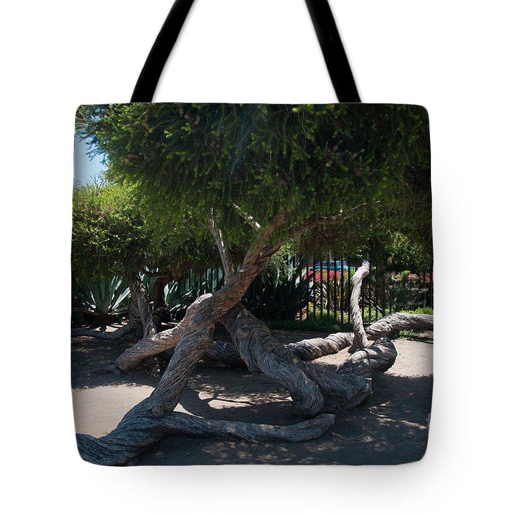California Tote Bag featuring the digital art La Brea Tar Pits by Carol Ailles