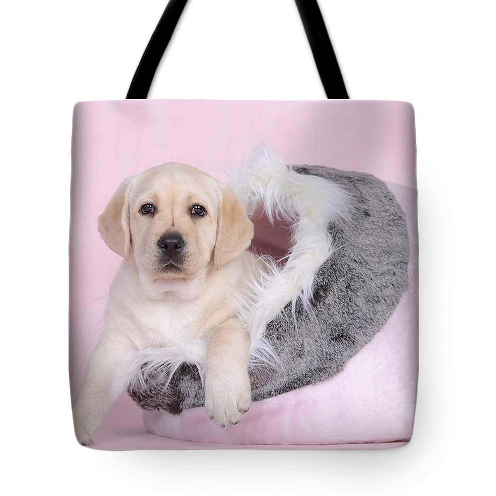 Animal Tote Bag featuring the photograph Lab In Pink by Waldek Dabrowski