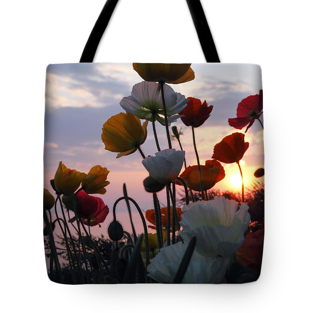 Sunset Tote Bag featuring the photograph Lake Geneva Sunset by Milena Boeva