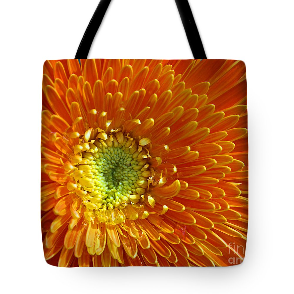 Orange Tote Bag featuring the photograph Layers by Dana Kern
