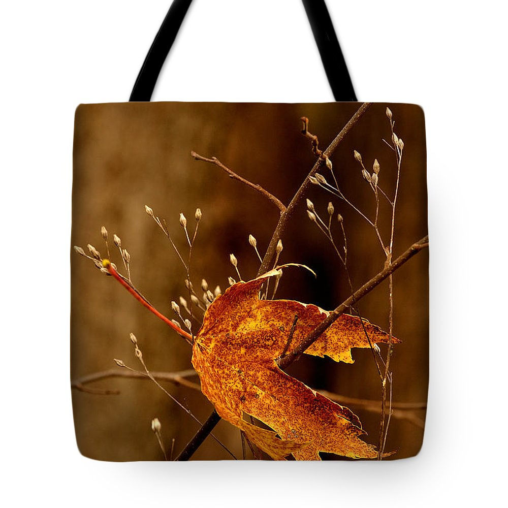 Maple Leaves Tote Bag featuring the photograph Lonely Leaf by Joshua McCullough