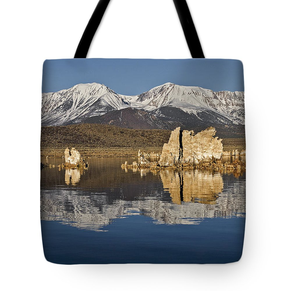 Mono Glow Tote Bag featuring the photograph Mono Glow by Wes and Dotty Weber