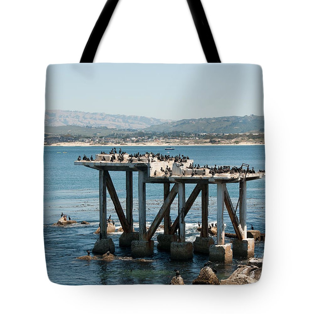 Animals Tote Bag featuring the digital art Monterey City Center by Carol Ailles