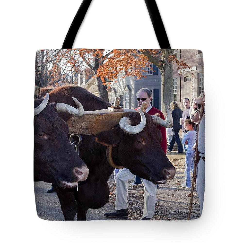 Oxen Tote Bag featuring the photograph Oxen And Handler by Sally Weigand
