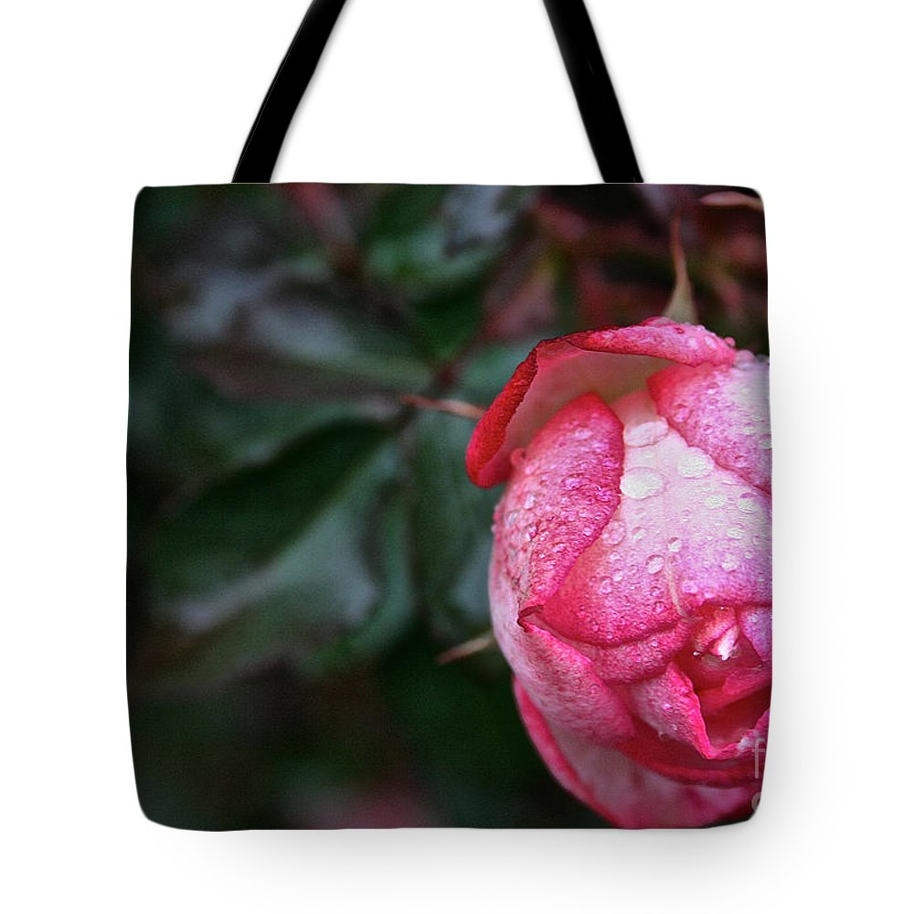 Flower Tote Bag featuring the photograph Peppermint Rose by Susan Herber