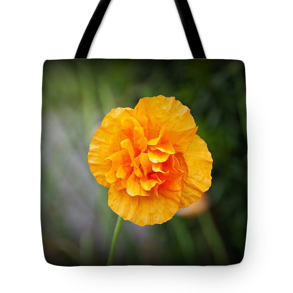 Poppy Tote Bag featuring the photograph Poppy Flower by Marilyn Wilson