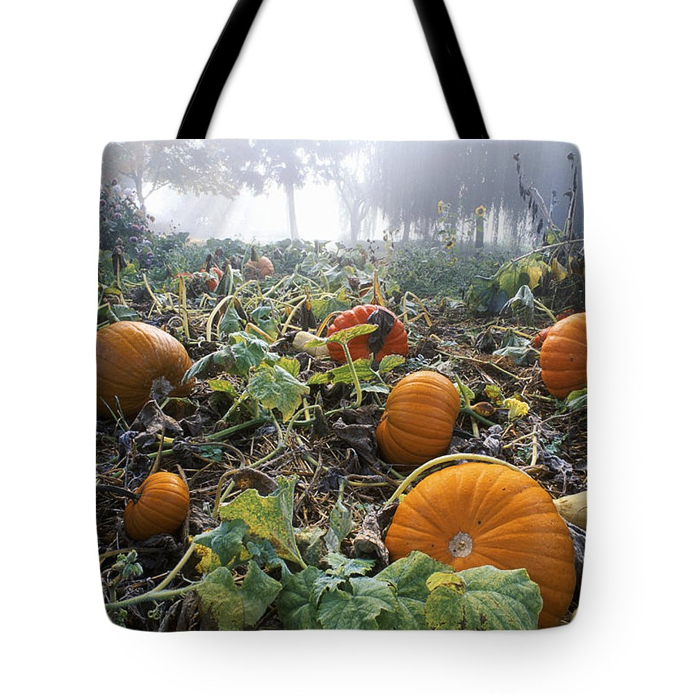 Agriculture Tote Bag featuring the photograph Pumpkin Patch, British Columbia by David Nunuk