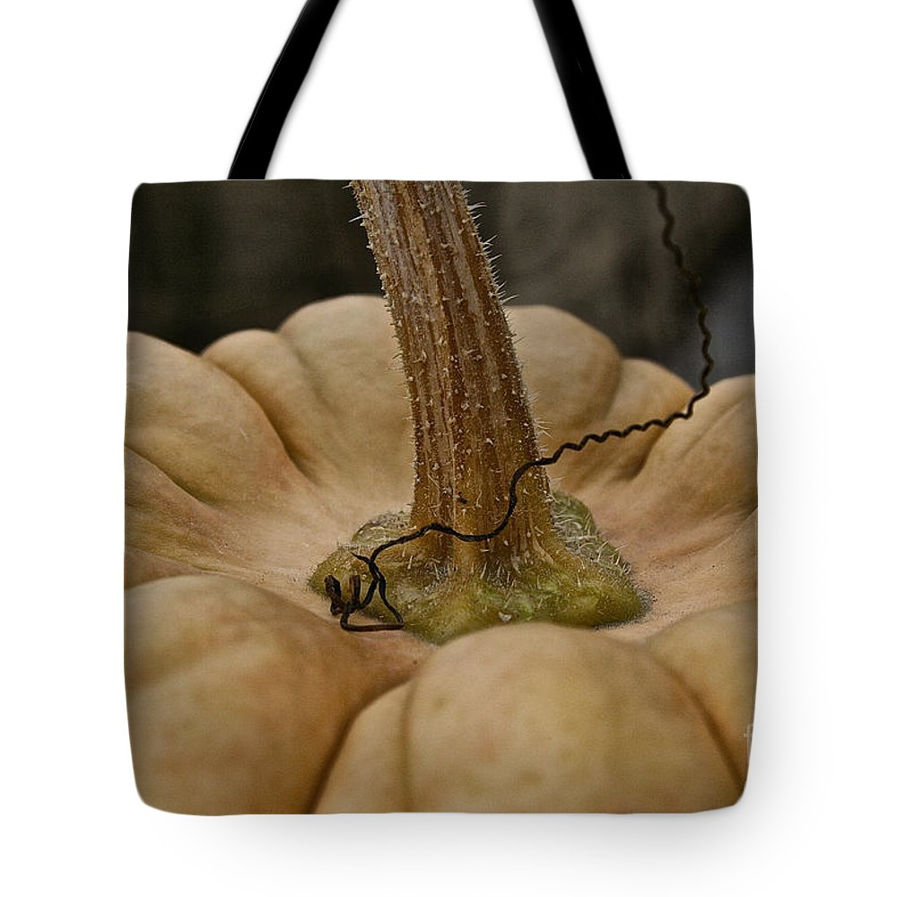 Tote Bag featuring the photograph Pumpkin Top by Susan Herber