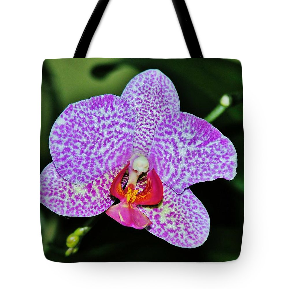 Orchid Tote Bag featuring the photograph Purple Orchid by Sherman Perry