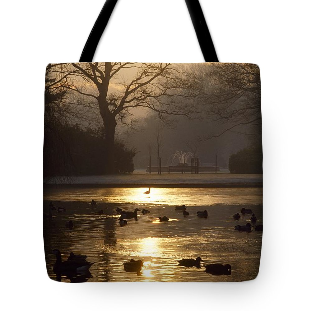 Back Lit Tote Bag featuring the photograph Saint Stephens Green, Dublin, Co by The Irish Image Collection