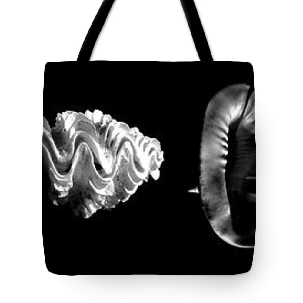 Seashells Tote Bag featuring the photograph Seashells by Frank Wilson