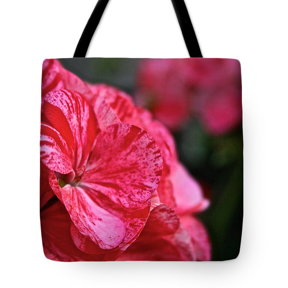 Outdoors Tote Bag featuring the photograph Speckled by Susan Herber