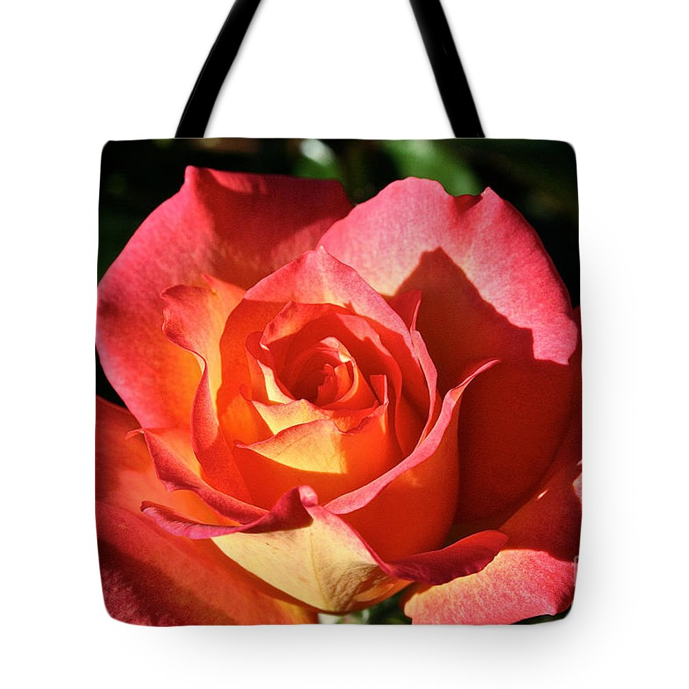 Flower Tote Bag featuring the photograph Sunny Pink by Susan Herber