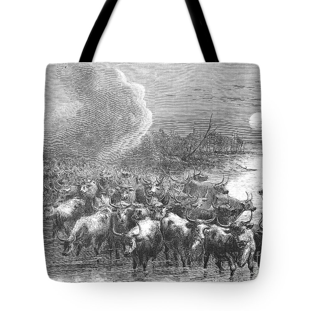 1867 Tote Bag featuring the photograph Texas: Cattle Drive, 1867 by Granger