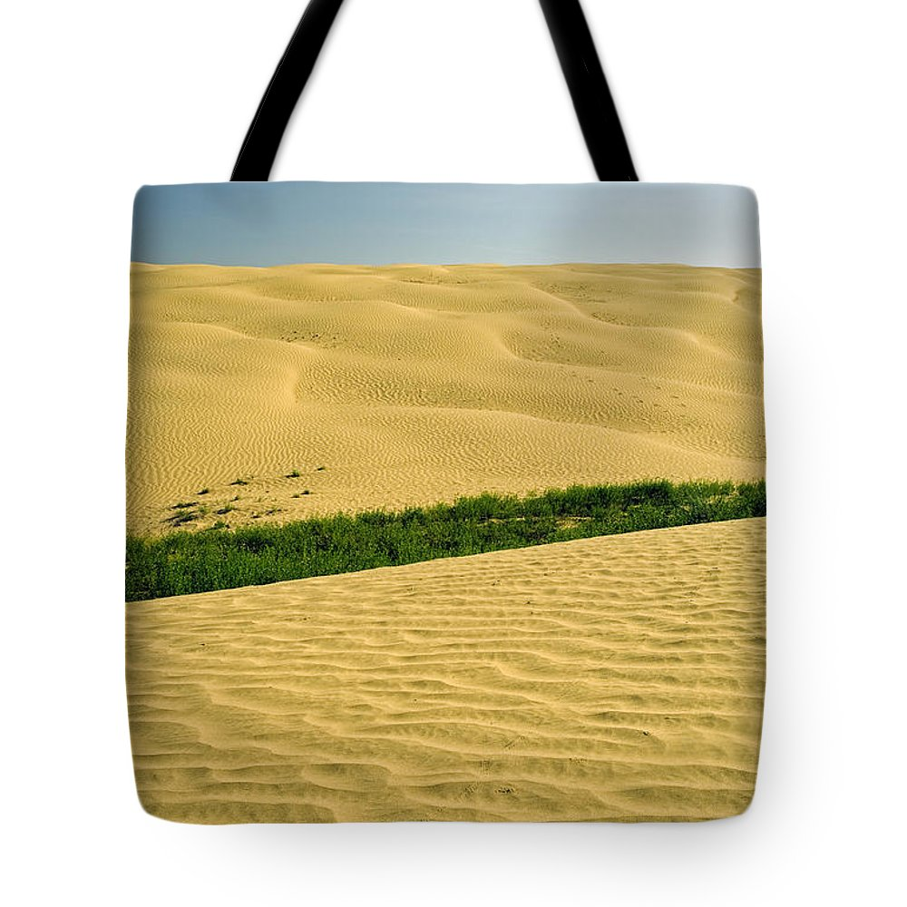 Colour Image Tote Bag featuring the photograph The Great Sandhills, Near Sceptre by Dave Reede