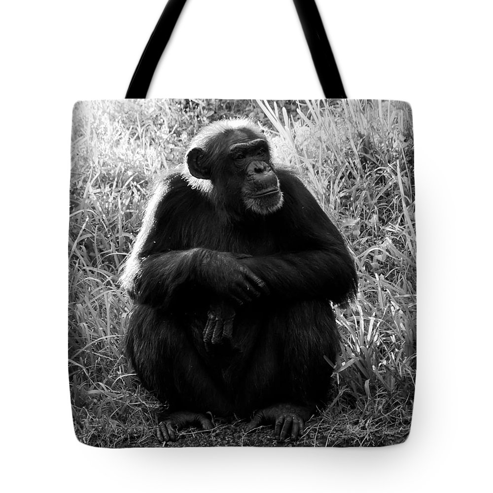 Fine Art Photography Tote Bag featuring the photograph Thinking by David Lee Thompson