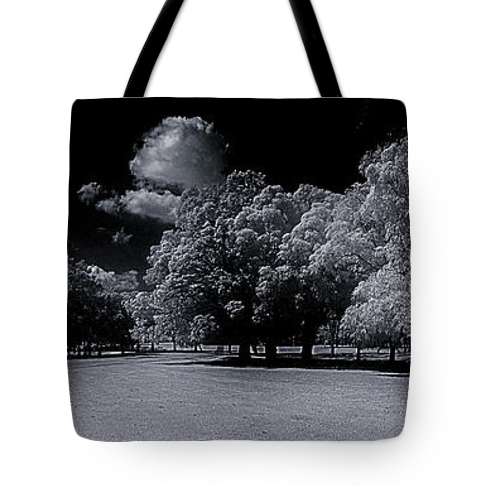 Tote Bag featuring the photograph Trees At The Carabobo Field by Galeria Trompiz
