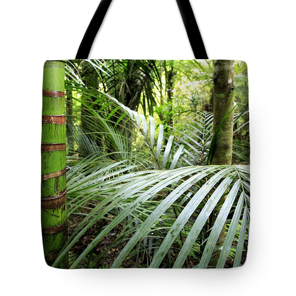 Environment Tote Bag featuring the photograph Tropical Jungle by Les Cunliffe