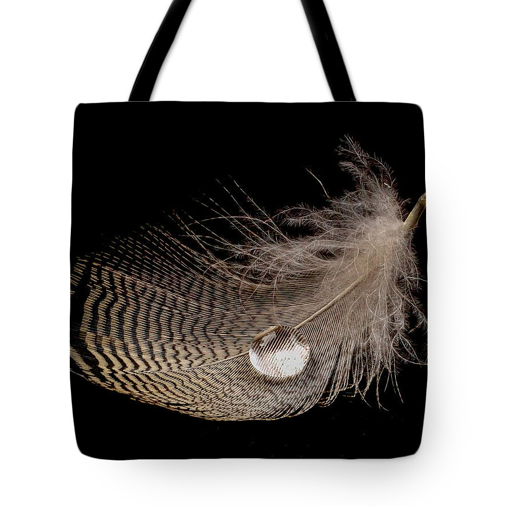 Jean Noren Tote Bag featuring the photograph Wet Feather by Jean Noren